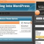 WordPressをカスタマイズしたい! そんな人が見るべき世界で人気のWPチュートリアルサイト ベスト10!
